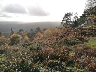 From Leith Hill