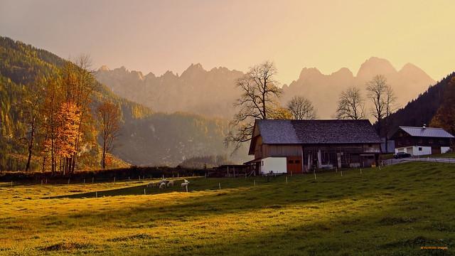 Alpine Autumn Landscape Gosaukamm Austria (c) Bernard Egger :: rumoto images 0169