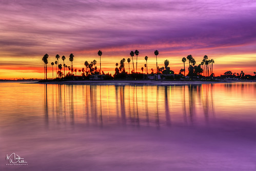 markwhitt markwhittphotography missionbay deanzacove california californiacoast southerncalifornia sandiego water ocean sea cove bay sunset colors colorful clouds trees palmtrees reflections outdoors scenic scenery landscape nature