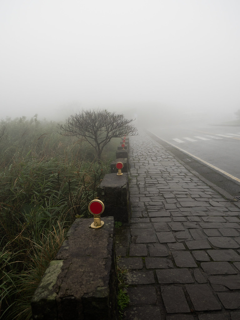 A pedestrian walkway at Yangmingshan National Park