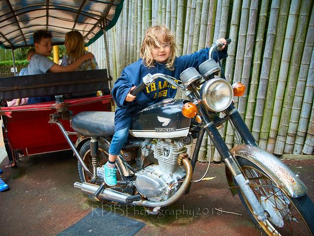 Kids at Wellington Zoo 69