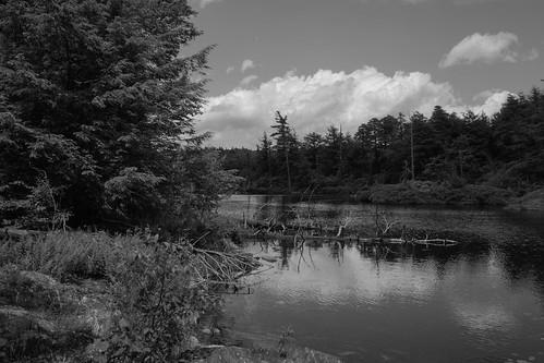 17mm em5 everett forest landscape monochrome mountain pond sky trees water woods egremont massachusetts unitedstatesofamerica us