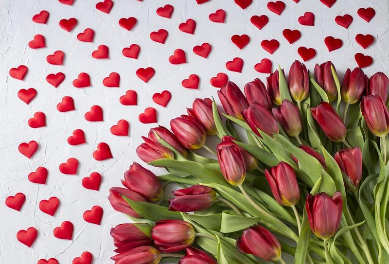 Обои любовь, букет, сердечки, тюльпаны, красные, red, love, wood, flowers, romantic, hearts, tulips, valentine's day картинки на рабочий стол, раздел цветы - скачать
