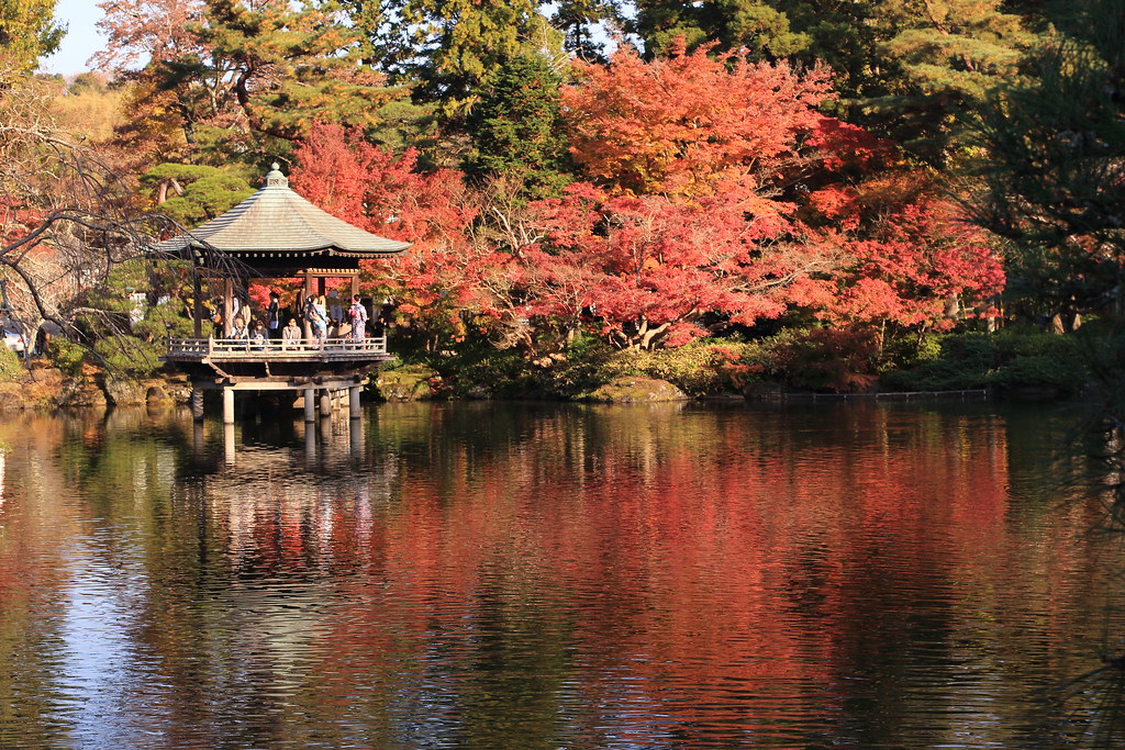 Full Autumn Color in Japanese Garden