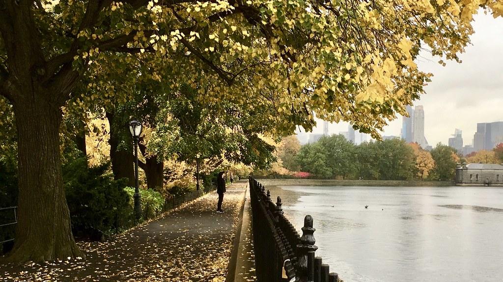 New York in autumn