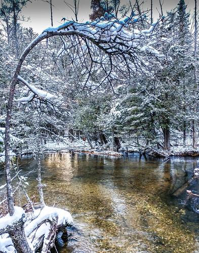 river view snow branch dock trees fernridge mi michigan fall november2018