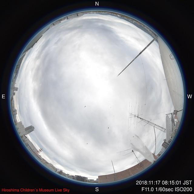 D-2018-11-17-0815_f