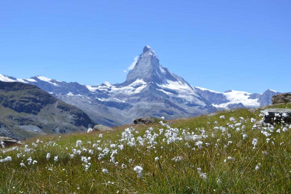 Matterhorn im Hochsommer