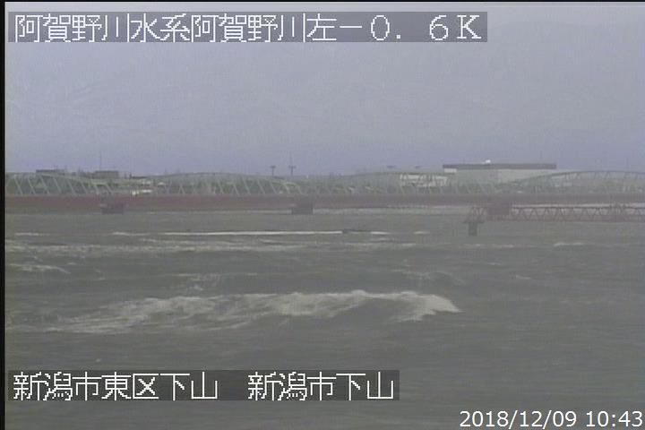 カメラ ライブ 阿賀野 川