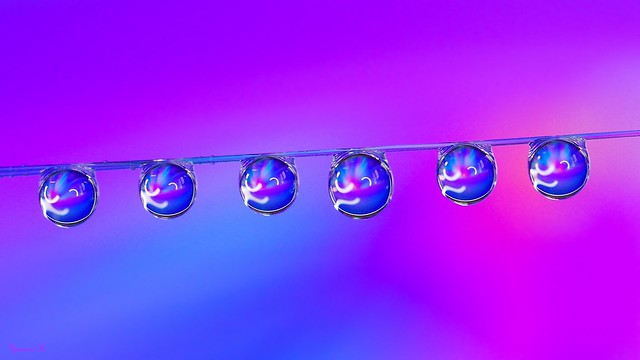 Droplets - 6342