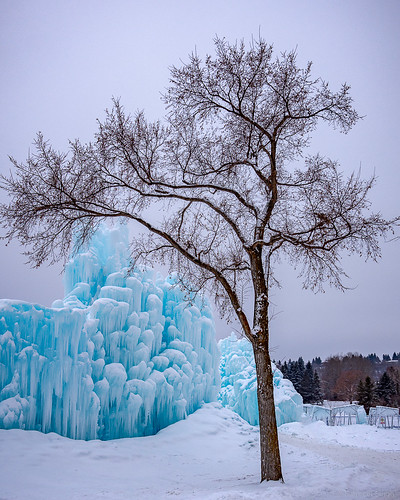 edmonton icecastle landscape winter nature alberta canada snow travelphoto travelalberta ss82 cold landscapephotography keepexploring landscapecaptures travelworld ca unlimitedcanada