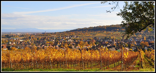 Rosheim (67) par une douce journée d'automne