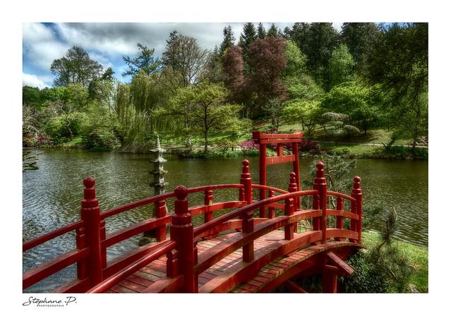 Jardin japonais (Japanese garden)