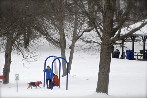 nanticoke newyork broomecounty greenwoodcountypark greenwoodpark lateautumn lake landscape forest playground snow heavysnow snowfalling dog canisfamiliaris canislupusfamiliaris people homosapiens rompinginthesnow
