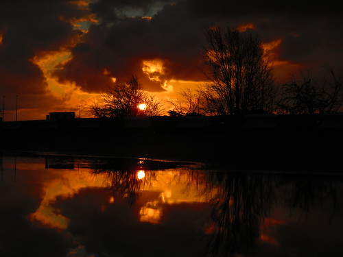 sunrise reflection reflected reflective reflections reflects ireland eireann effect water puddle puddles sun dap dublin dublinairport codublin county co fingal tree trees clouds cloud cloudsstormssunsetssunrises airport irish irishwildlife morning nature naturesbeauties naturescreations sky underthetrees vanishing vanishingpoints wildlife