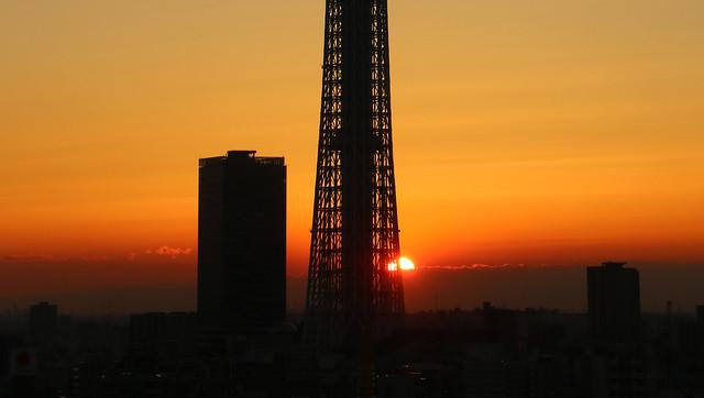 Skytree Sunrise