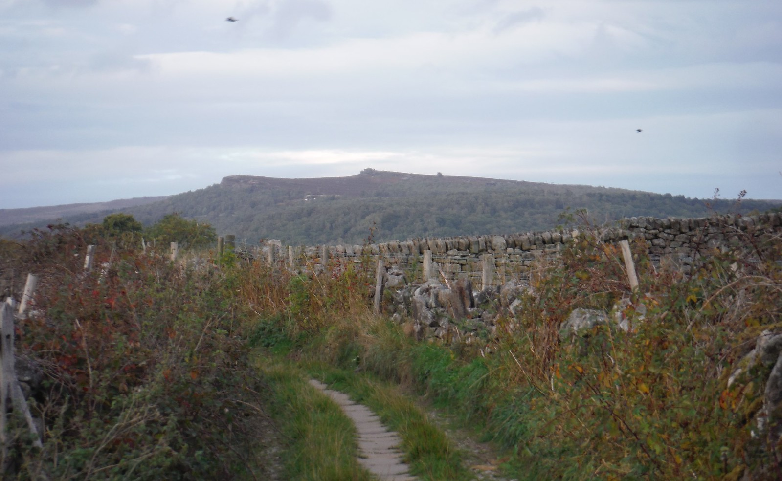 Higger Tor and Over Owler Tor, from Spooner Lane SWC Walk 322 - Grindleford Circular (via Chatsworth House)