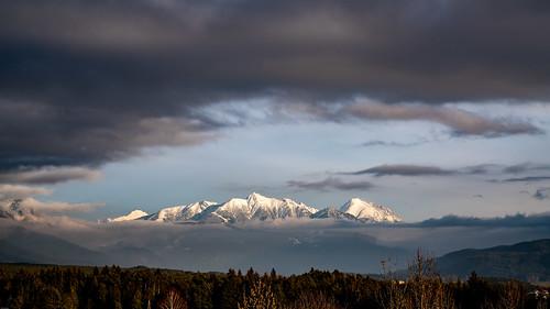 mieming berge gebirge wald wälder alpen austria schnee winter kalt klettern barwies obsteig