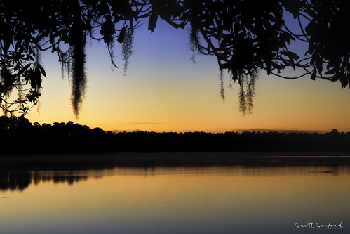 6d canon cypress eos fog lake morning naturalbeauty naturallight nature outdoor reflection sunlight texas topazlabs water beautiful mist swamp trees ef24105mmf4lisusm sunrise silhouette martindiesjrstatepark