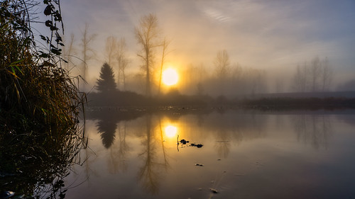 sunrise foggy pond trees fall moody sky sun tree landscape golden glowing reflections water sunrays wide sonya73 warm serene foilage