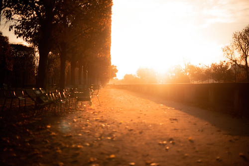 Sunrise in Paris | by TheLittlePaws