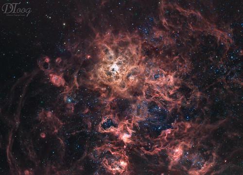 Tarantula Nebula - NGC 2070 | by Delberson Tiago