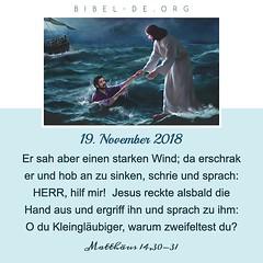 Christliche Kalender – Matthäus 14,30-31