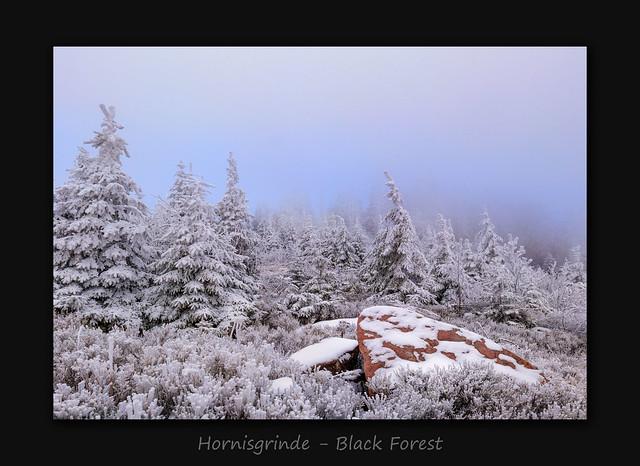 Hornisgrinde - Black Forest