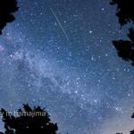 IMG10788_Shooting Star