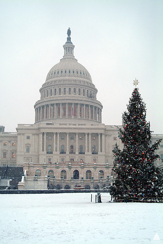2002 U.S. Capitol Christmas Tree | by USCapitol