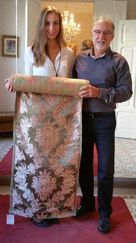 Brocatel estrecho de seda hecho para la F.M 2017 Raquel Alario