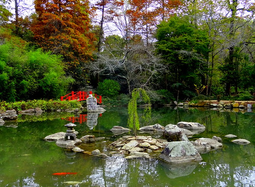 botanical garden landscape flora foliage travel water autumn november usa sony bridge pond stone birmingham alabama