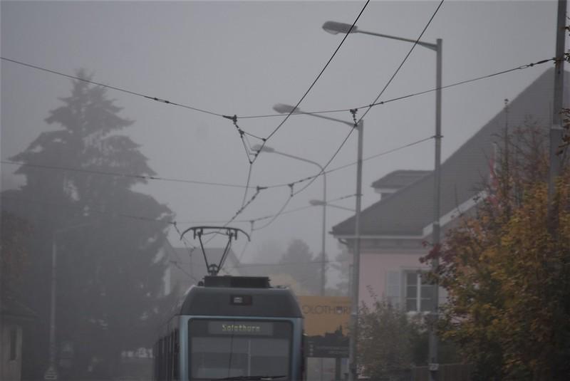 Mist 14.11 (3)