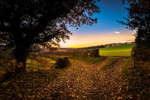 mosborough mossvalley nikon d7200 tokina1120mmatx tokina 1120mmproatx11 1120mmproatx path gate field sheffield plumbley scenicsnotjustlandscapes countryside countrylife country autumn sunset
