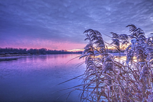 canon6d sunrise morning dawn lake water reflection landscape waterscape outdoors nature uk cambridgeshire