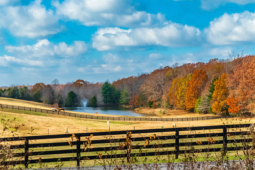 fairview fairviewheights fall farm hdr hiking landscape nature sonya6500 sonyimages tennessee usa unitedstates outdoors exif:isospeed=400 camera:make=sony exif:lens=epz18105mmf4goss exif:make=sony geo:location=fairviewheights geo:city=fairview geo:country=unitedstates exif:focallength=47mm geo:state=tennessee exif:aperture=ƒ95 geo:lon=87151008333333 geo:lat=35964041666667 camera:model=ilce6500 exif:model=ilce6500