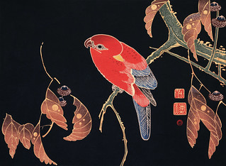 Red Parrot on the Branch of a Tree (ca. 1900) by Ito Jakuchu. Original from The MET Museum. Digitally enhanced by rawpixel.