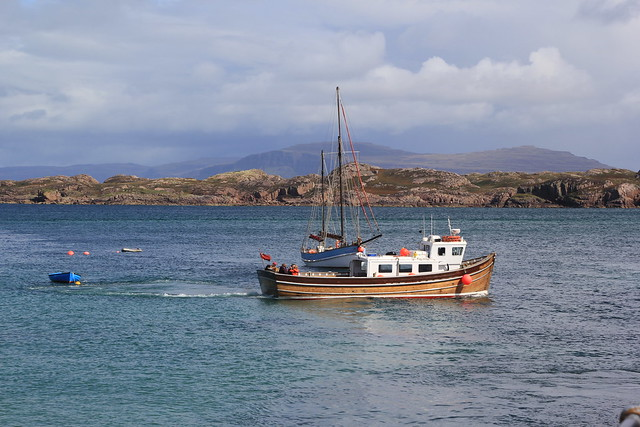 In the Bay, Mull and Iona, Scotland.