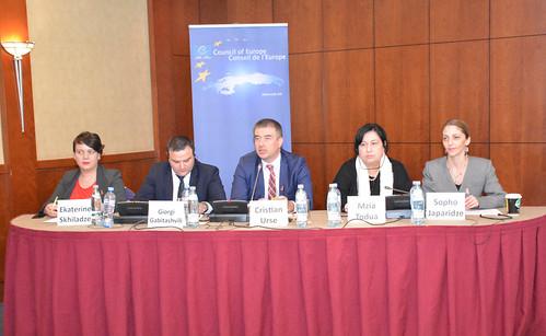 სამუშაო შეხვედრა სტამბოლის კონვენციის იმპლემენტაციის შესახებ 30.11.18 Working Meeting on Implementation of Istanbul Convention