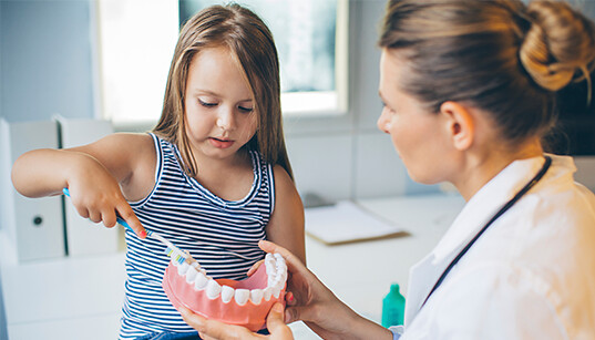 Dentist In Thailand The Dentists We Employ Are The Best