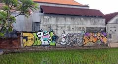 Graffiti Art in Bal, Sole Prost i 20181220_073901