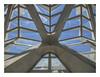 Lush concrete (3) (Museo de las Ciencias Príncipe Felipe) by AurelioZen
