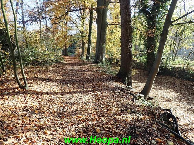 2018-11-15  Vorden- Zelhem    20 Km  (15)