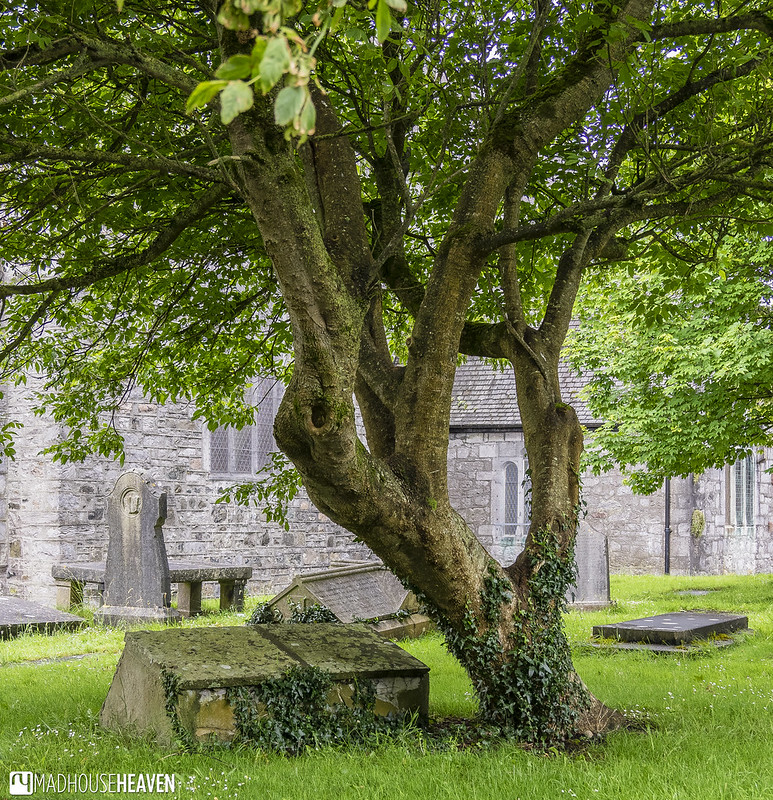 Ireland - 0798