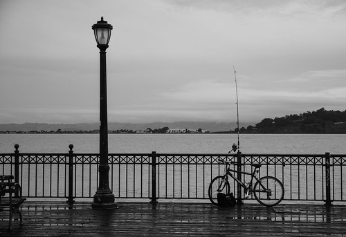 cahi california sanfrancisco bayarea blackandwhite monochrome serene fisherman biker bicycle cloudy relaxing calmness view sea pole pier streetphotography contrast explore hff happyfencefriday