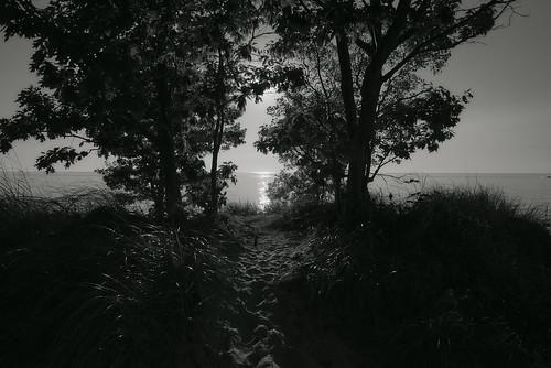 blackandwhite shadows silhouettes lake lakeshore beach beachgrass reflections path horizon