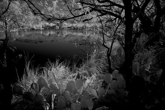 Thermal pond