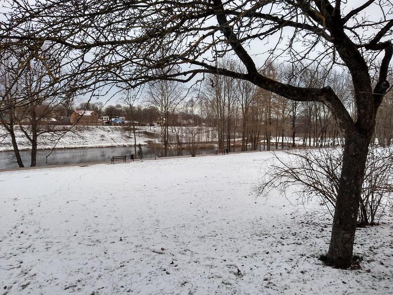 дендропарк зимой