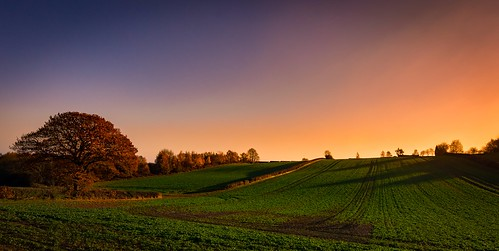 mosborough mossvalley sheffield nikon d7200 tokina1120mmatx tokina 1120mmproatx11 1120mmproatx green field tree sunset orange scenicsnotjustlandscapes ngc england