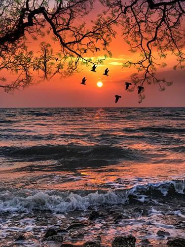 Have a wonderful morning all my friend ☀️😊☺️🙏 | by basem_teacher